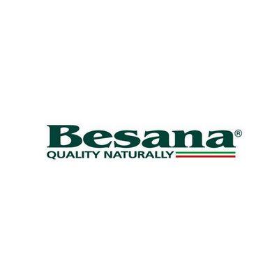 besana_logo